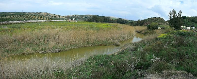 El arroyo Salado de Espera (Arcos)