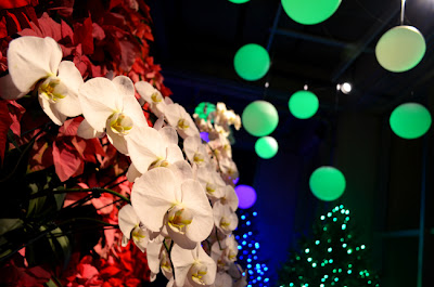Garden Lights Holiday Nights, Atlanta Botanical Garden