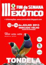 EXPOSIÇÕES 2013