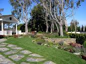 #4 Garden Design Ideas