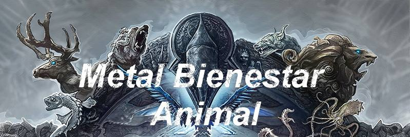 METAL BIENESTAR ANIMAL