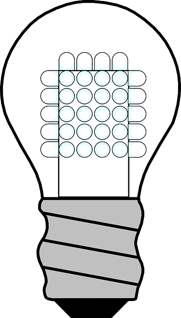 Subsidized LED bulb distribution in Delhi