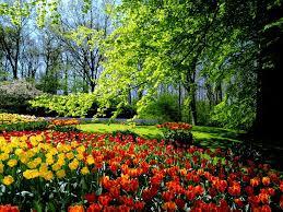 poemas+de+primavera+flores