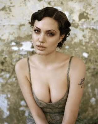 angelina jolie wallpaper bikini. Angelina Jolie hot images,