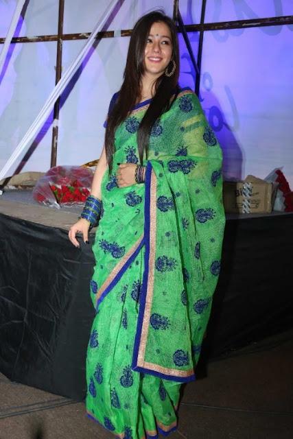 Priyal Gor Actress SareePhotos