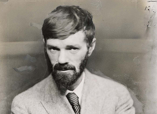 dh lawrence essay View and download dh lawrence essays examples also discover topics, titles, outlines, thesis statements, and conclusions for your dh lawrence essay.