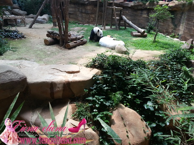 Giant Panda Convention Centre