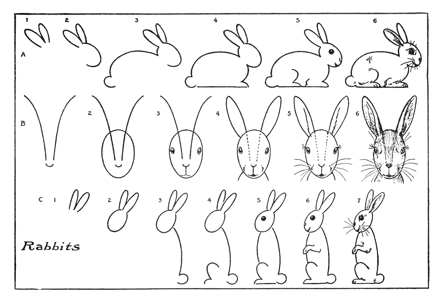 How To Draw A Rabbit How To Draw A Plush Bunny Step 6