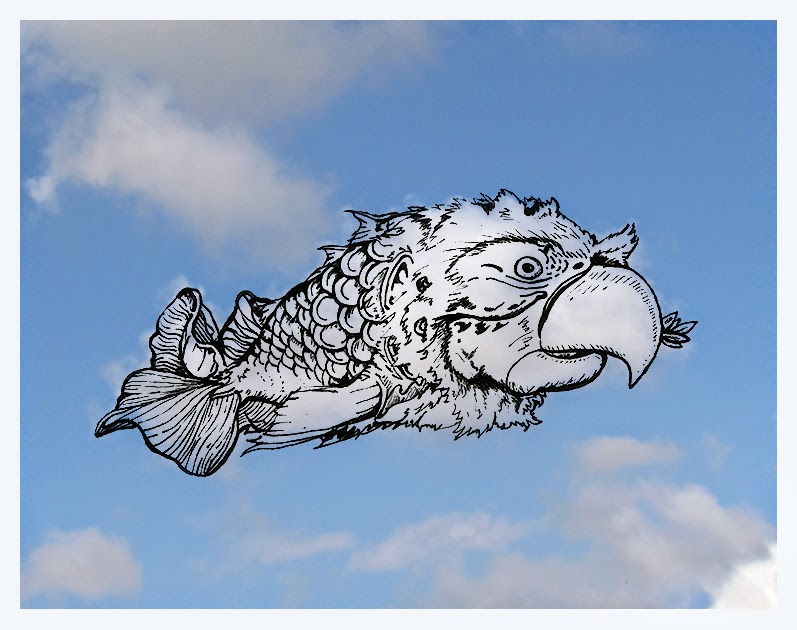 13-Parrot-Fish-Cloud-Martín-Feijoó-Images-in-the-Sky-Cloud-Drawings-www-designstack-co