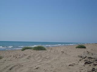 El Trabucador Beach photo - Sant Carles de La Rápita - Tarragona - Spain