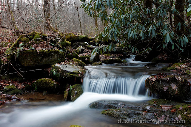 Flowing Stream - Great Smoky Mountain National Park