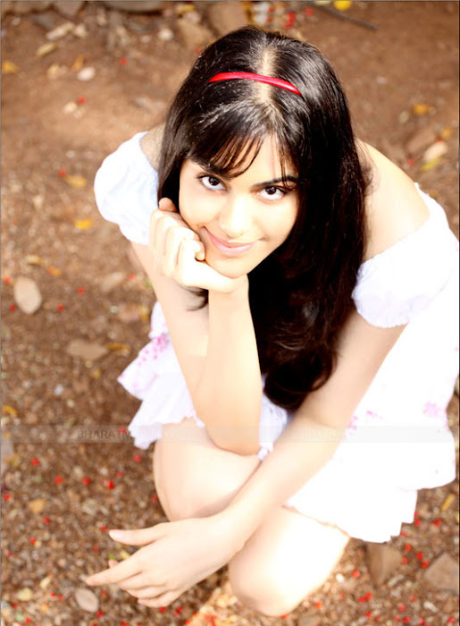 adah sharma stunning shoot hot images
