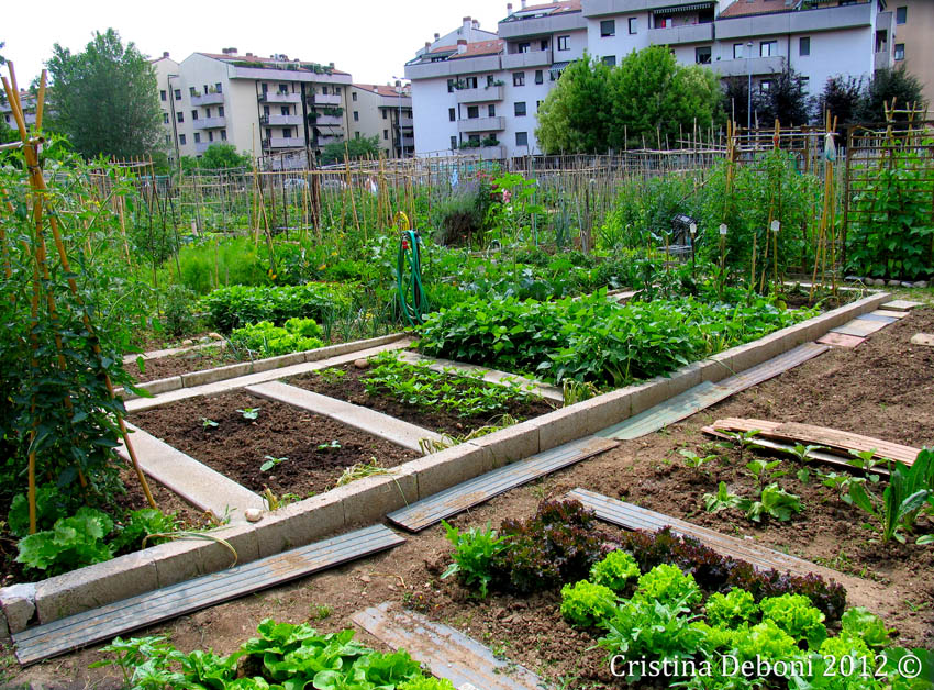 Tolmezzo: saranno famiglie a basso reddito le destinatarie del nuovo orto urbano