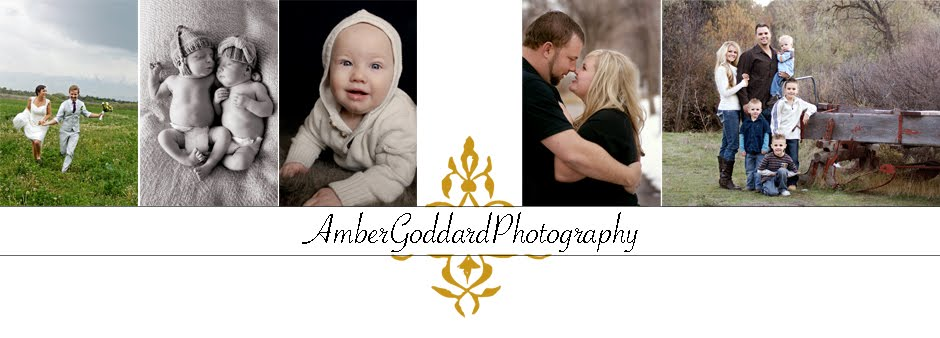 Amber Goddard Photography