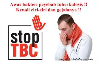 http://phuysiteherbal.blogspot.co.id/2015/11/pengobatan-tradisional-tuberkulosis.html