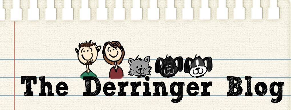 The Derringer Blog