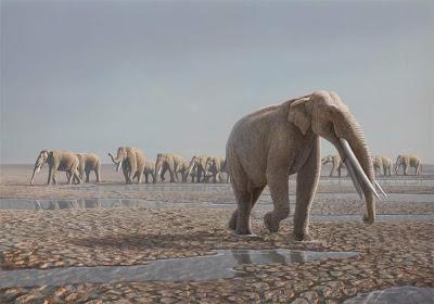elefantes prehistoricos Stegotetrabelodon
