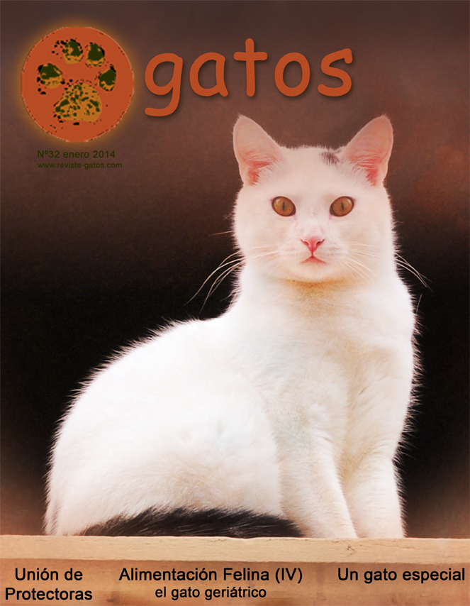 Revista Gatos N 32