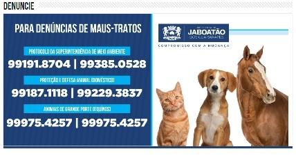 LIGUE (9.9191.8704) - DENUNCIE E PEÇA SEU Nº. PROTOCOLO.