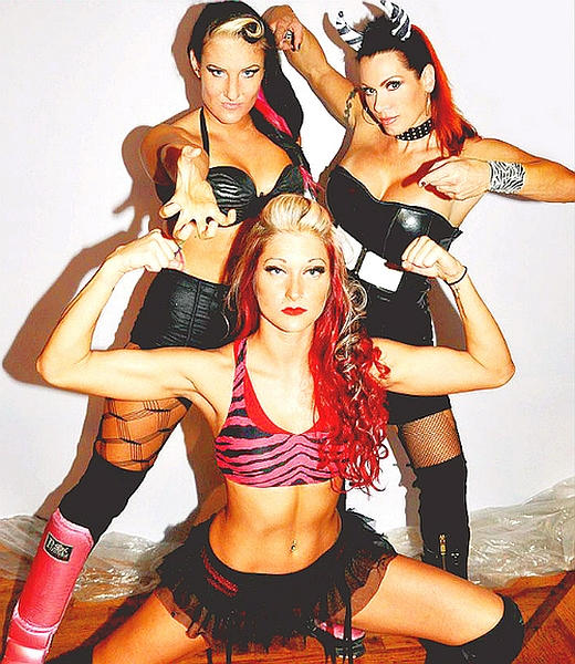 women s pro wrestling, women s professional wrestling, women vs women wrestling