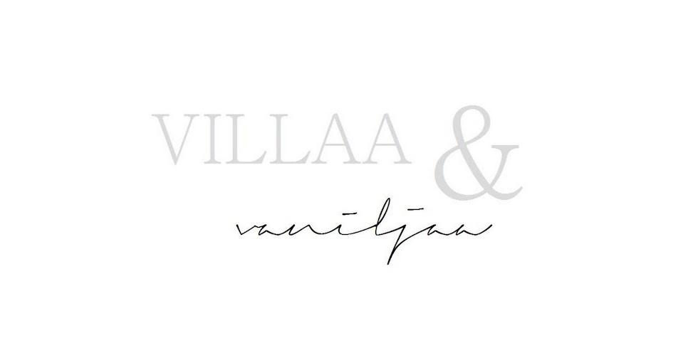Villaa ja vaniljaa