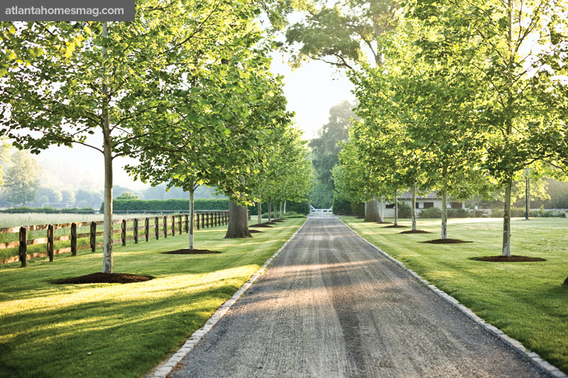 the white shed tree lined driveways