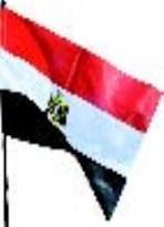 دار الإفتاء: تحية العلم والوقوف للسلام الوطني جائزان شرعًا