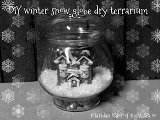 DIY winter snow globe dry terrarium; makes a great centerpiece, gift, keepsake. What would you make this for?