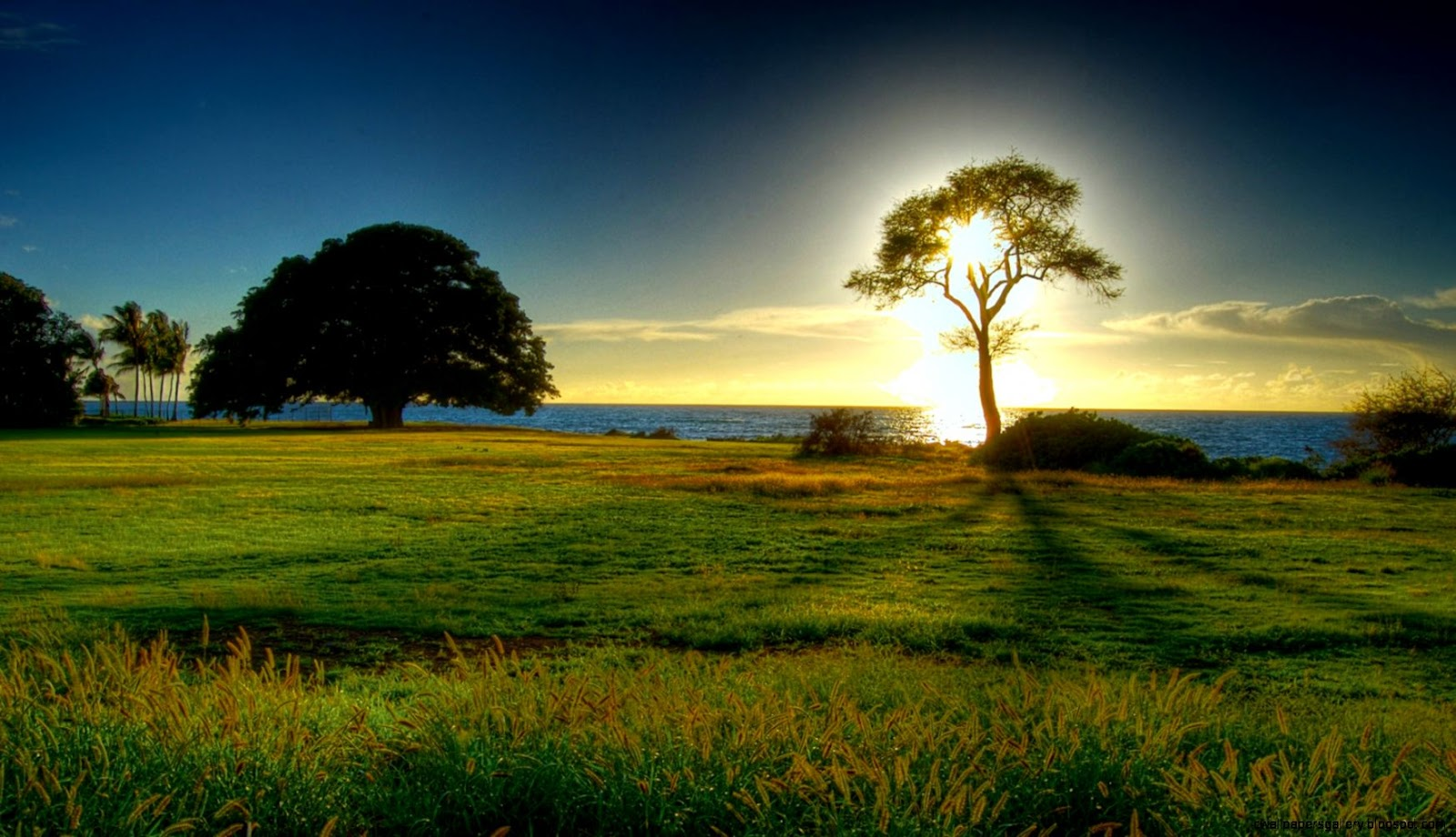 Beautiful Nature Desktop Backgrounds