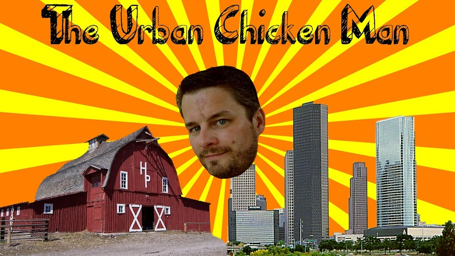 The Urban Chicken Experiment