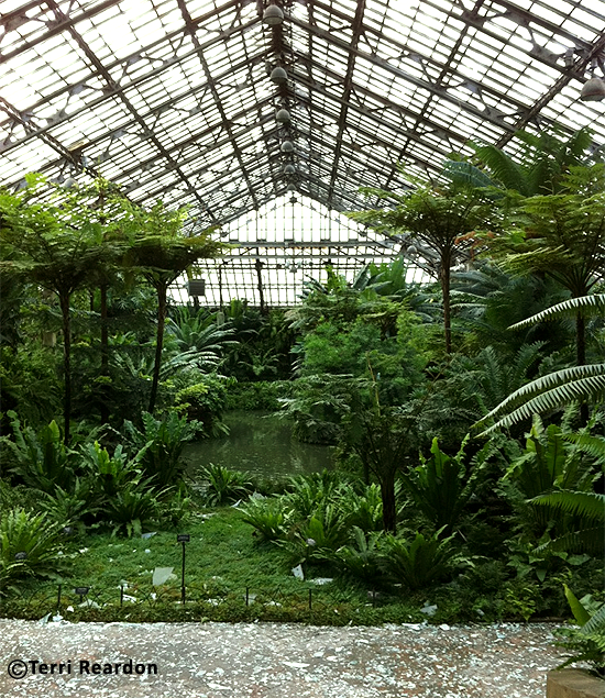 Fern room Garfield Park Conservatory damaged after storm