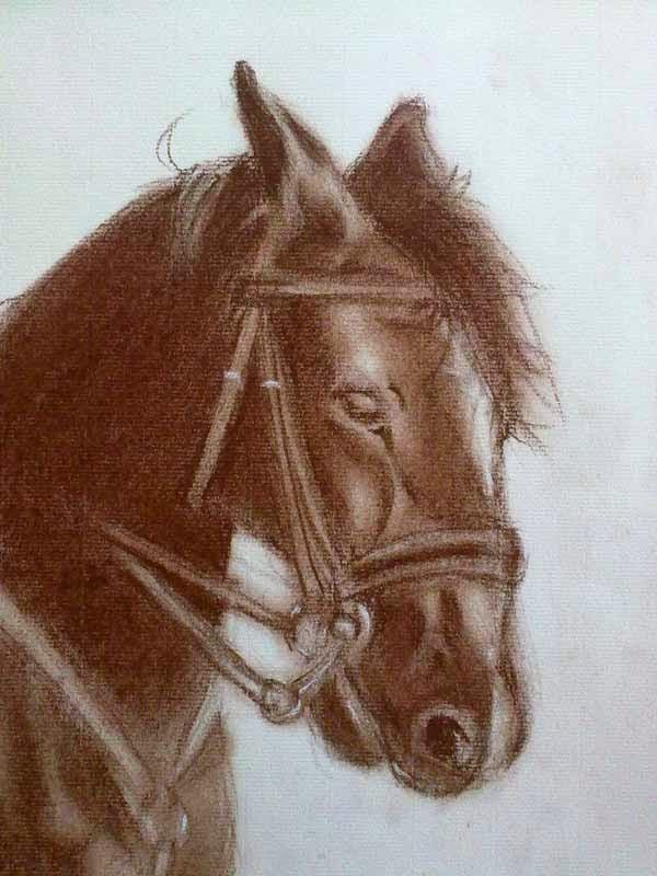 cabeza de caballo dibujada con sanguina