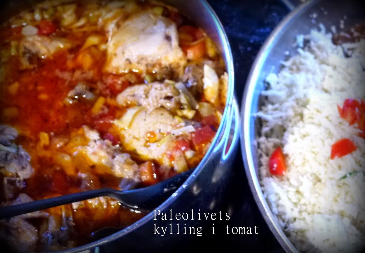 kylling i tomatsauce