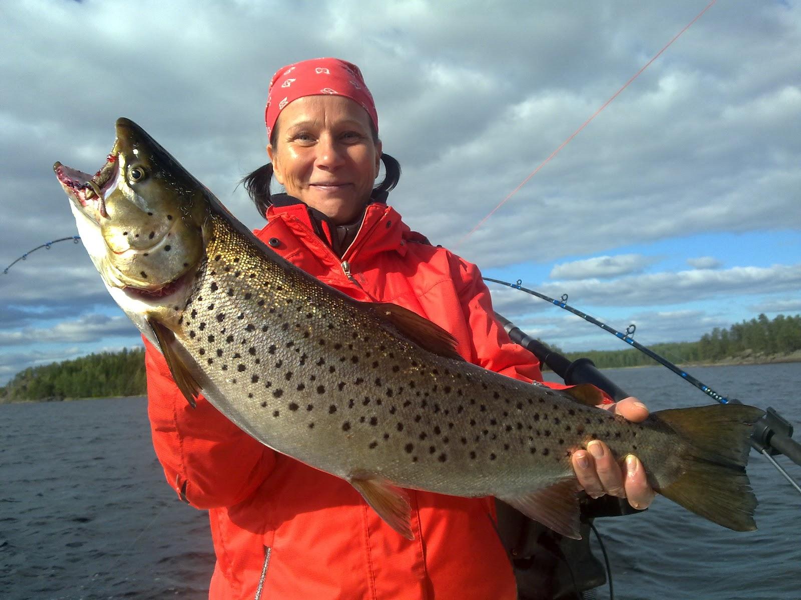 На что ловить лосося троллингом