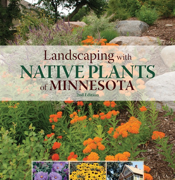 Landscaping With Native Plants : Landscape with native plants landscaping of