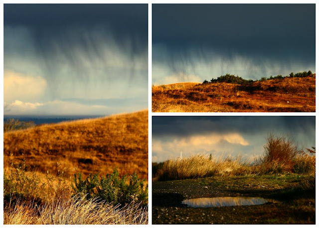 Connemara collage © Annie Japaud Photography, landscape, nature, Connemara, Ireland,