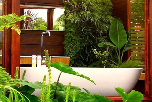 Welke planten in de badkamer? | Melanie @Home