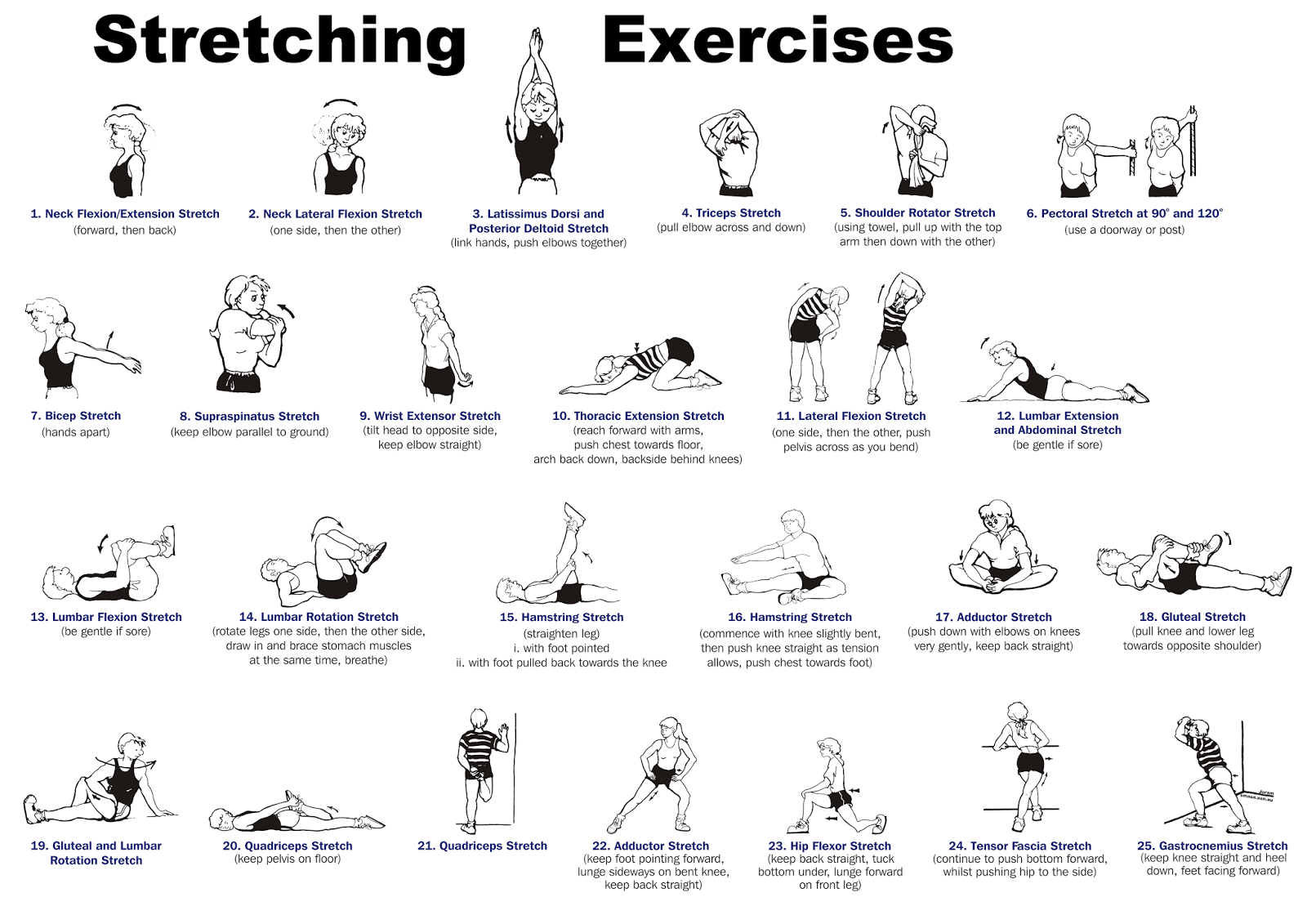 Stretching Excercises example