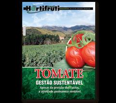 ENQUETE: Como lidar com o aumento do custo e manter a tomaticultura rentável?