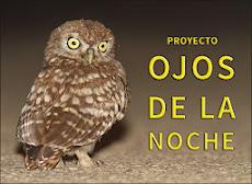 """Proyecto """"Ojos de la noche"""""""