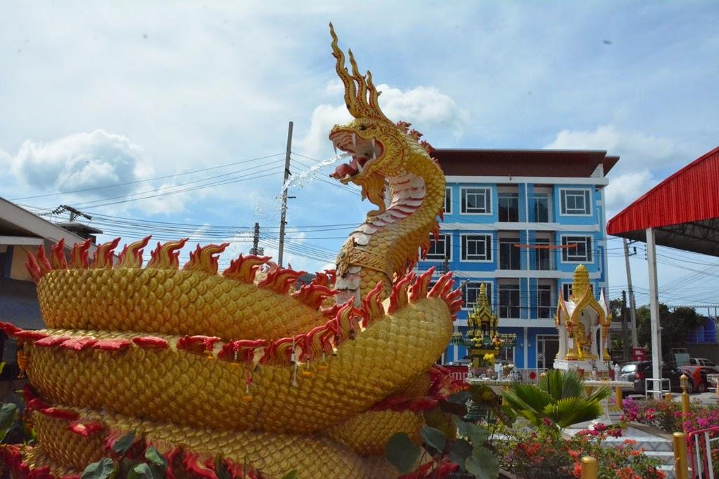 Phuket General dragon