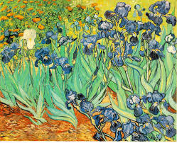 "Famous Painting ""Irises"" by Vincent Van Gogh, 1889"