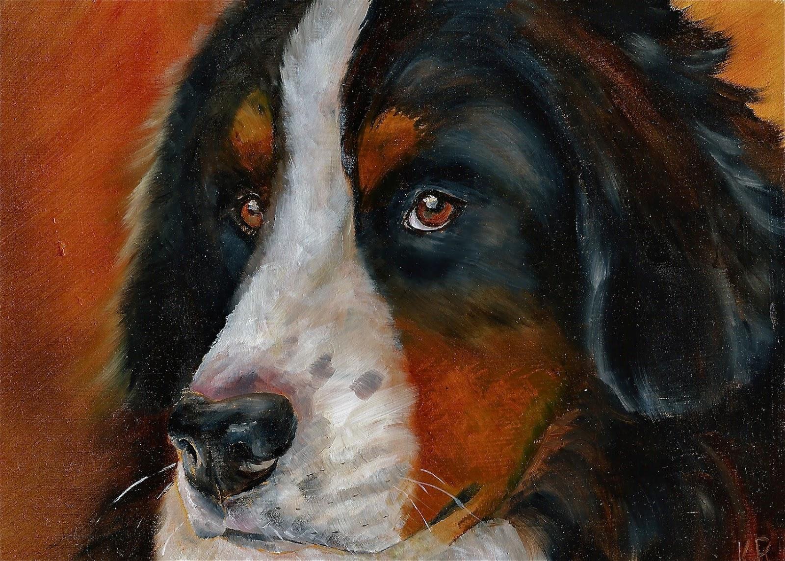 Bernese mountain dog oil painting. A pet portrait.
