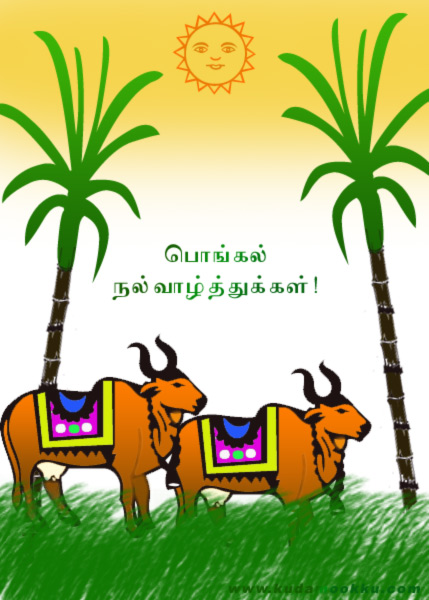 BEST WALLPAPERS: Tamil Pongal Greeting Cards Colletion free download