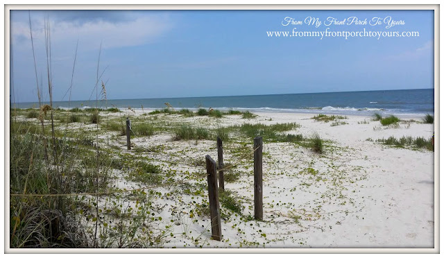 St. George Island, Fl-The Forgotten Coast- From My Front Porch To Yours