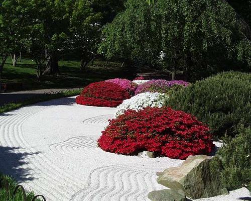 Abrir el horizonte jardines zen for Jardin zen plantes