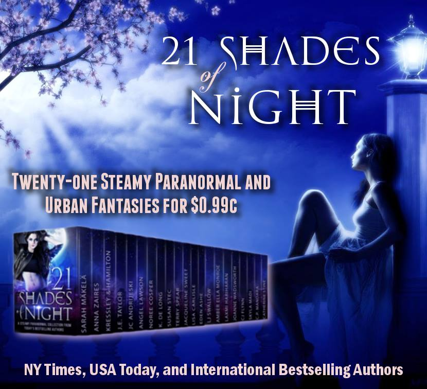 Get 21 Shades of Night on iBooks