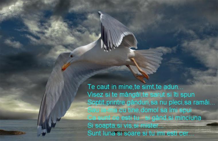 Te caut in mine...poezie de Beatrice Popescu