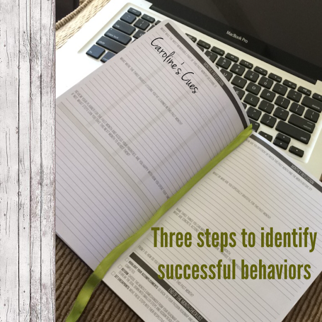 Caroline's Cues | Three steps left going into 11 - how to identify successful behaviors