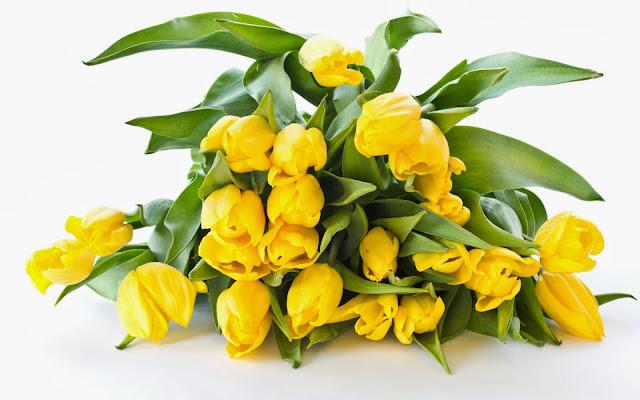 Ramo de Rosas Amarillas para el Dia del Amor y la Amistad